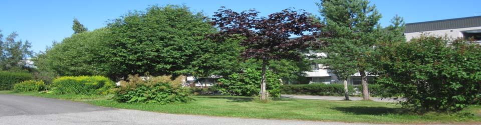 cropped-gård-c-960-250.jpg